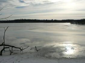 View over Cootes Paradise on a winter day